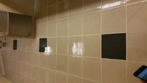 grout repair and sealant